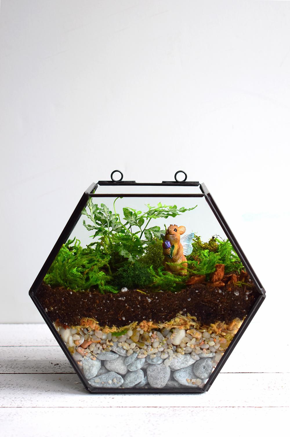 Geometric Silver Leaf Fern Terrarium via A Charming Project Final