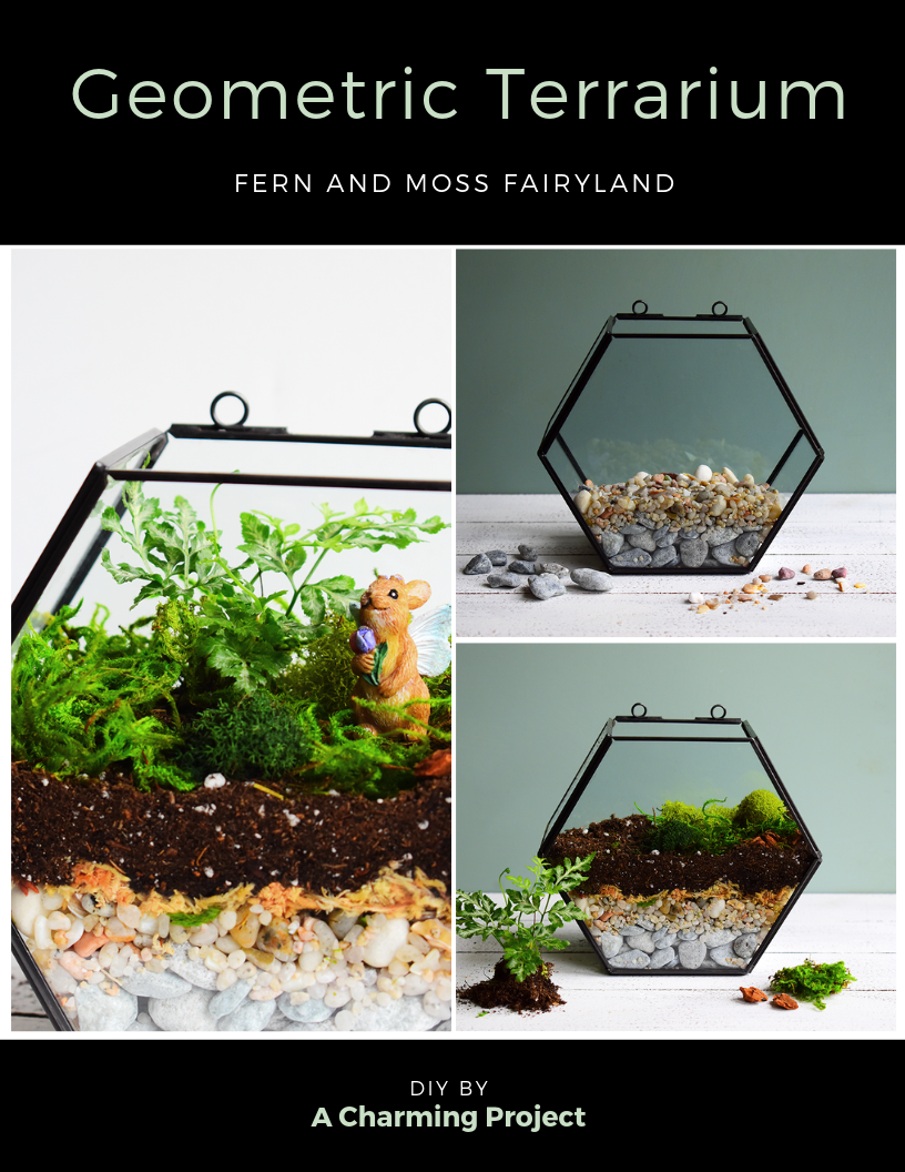 Fern And Moss Fairyland Terrarium Project by A Charming Project