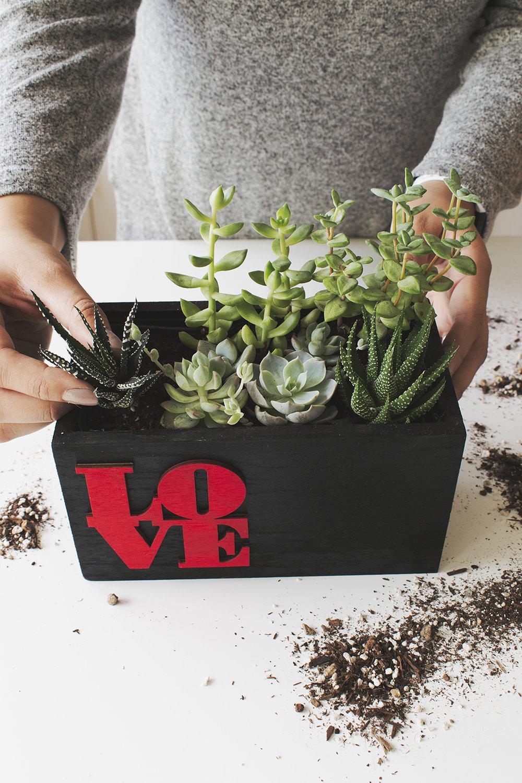 Love Planter via A Charming Project Mini Succulent Garden