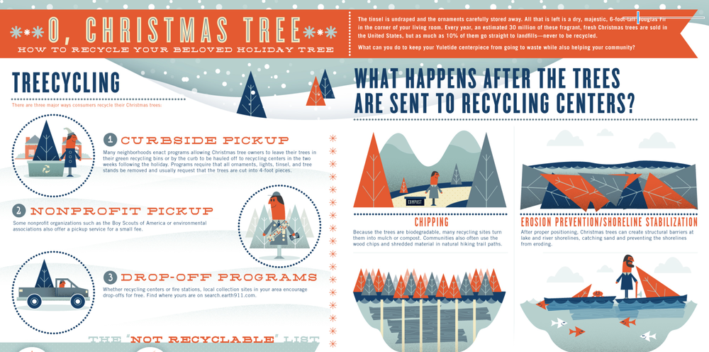 kerstboom infographic