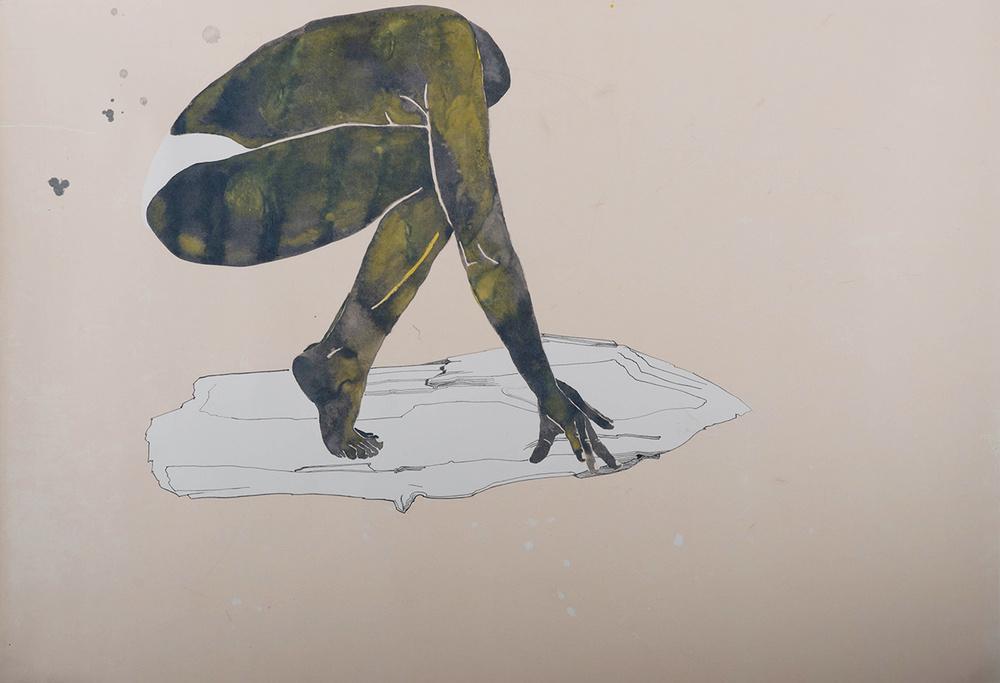 monika-mikyskova-evolucia