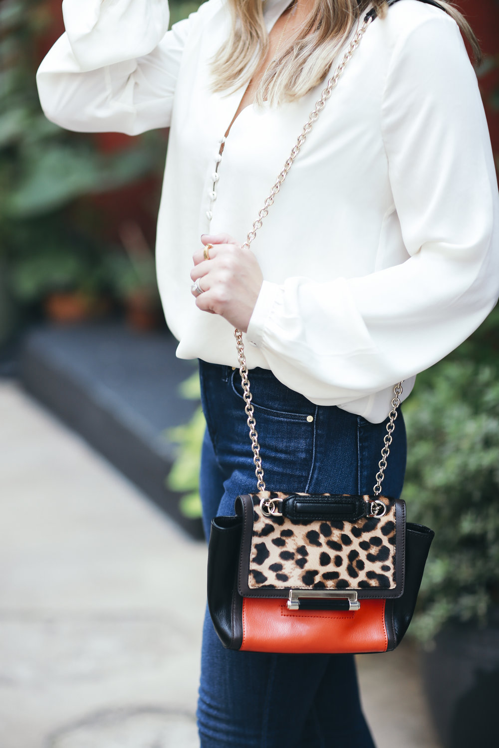 leopard and red bag