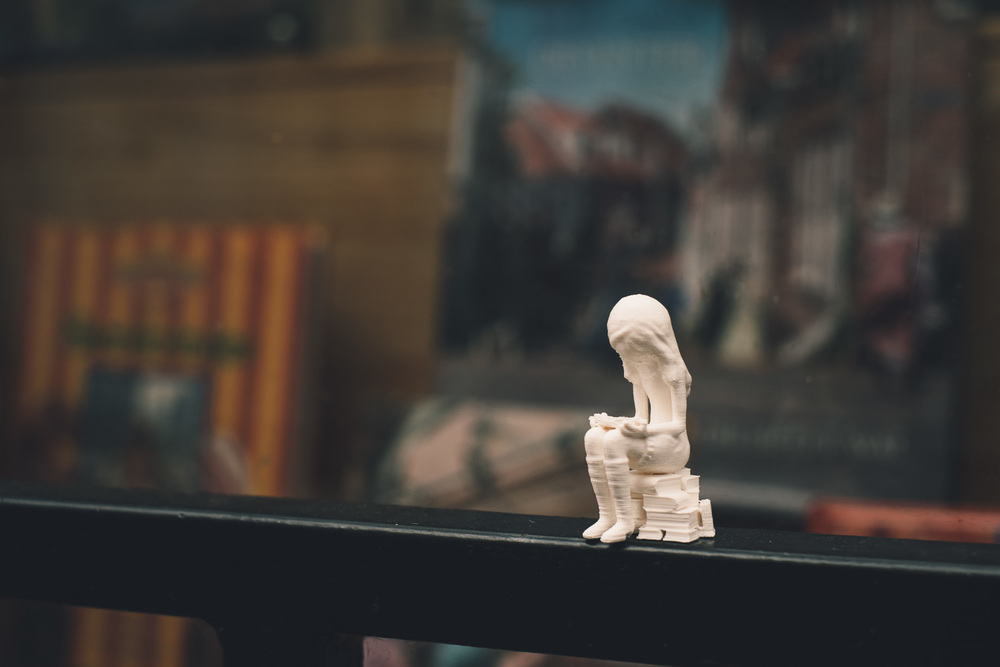 Bookstore girl 3D print