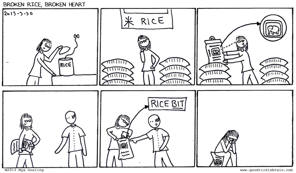 When buying rice, you shouldn't necessarily just grab the first bag you see with the elephant logo you usually get on it. It might be broken rice. And then you might be stuck with 25lbs of broken rice you really didn't want.