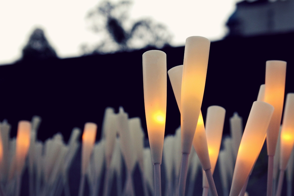 Flaming Reed in Autumn - Interaction and Light Design
