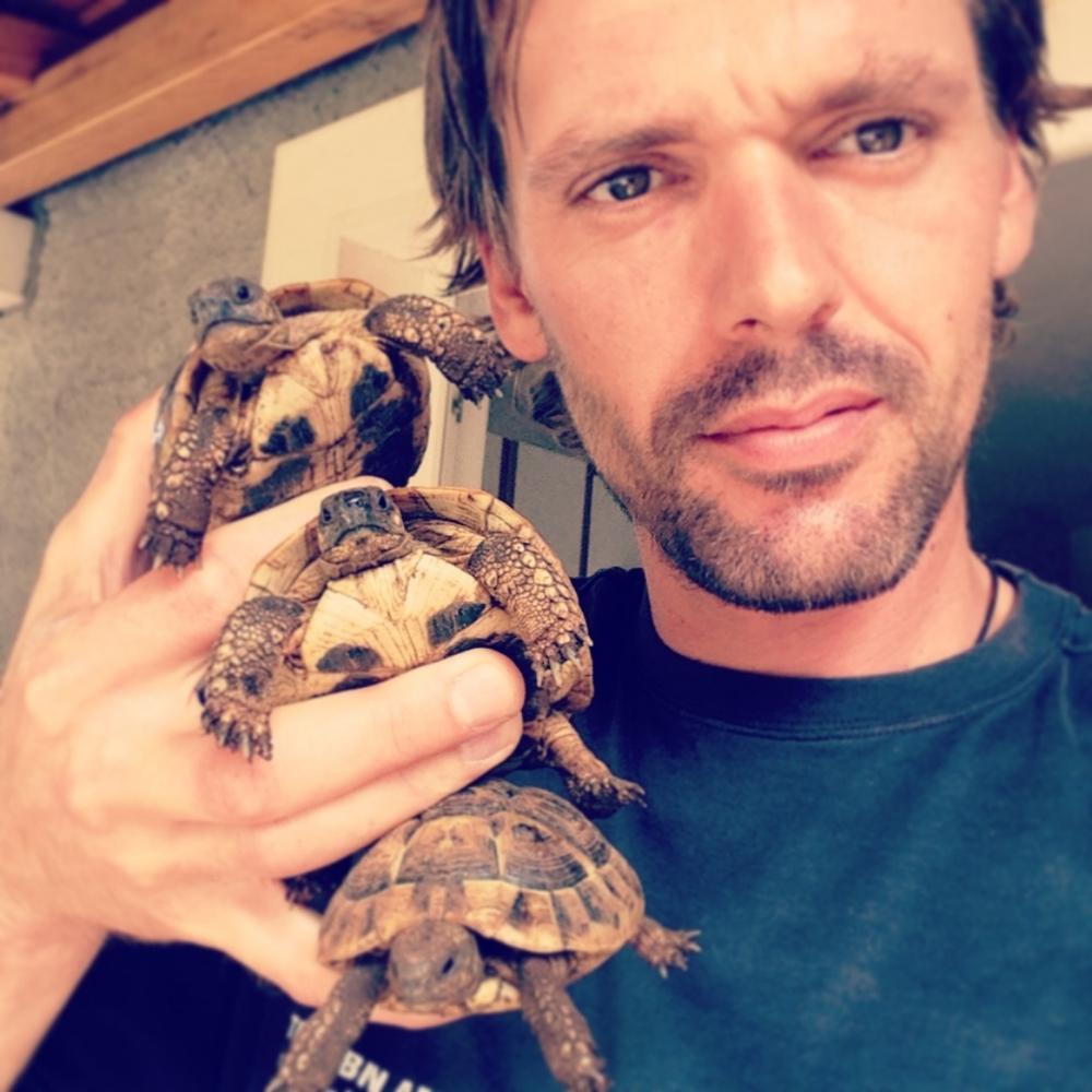Hvar island, Turtle brothers :)
