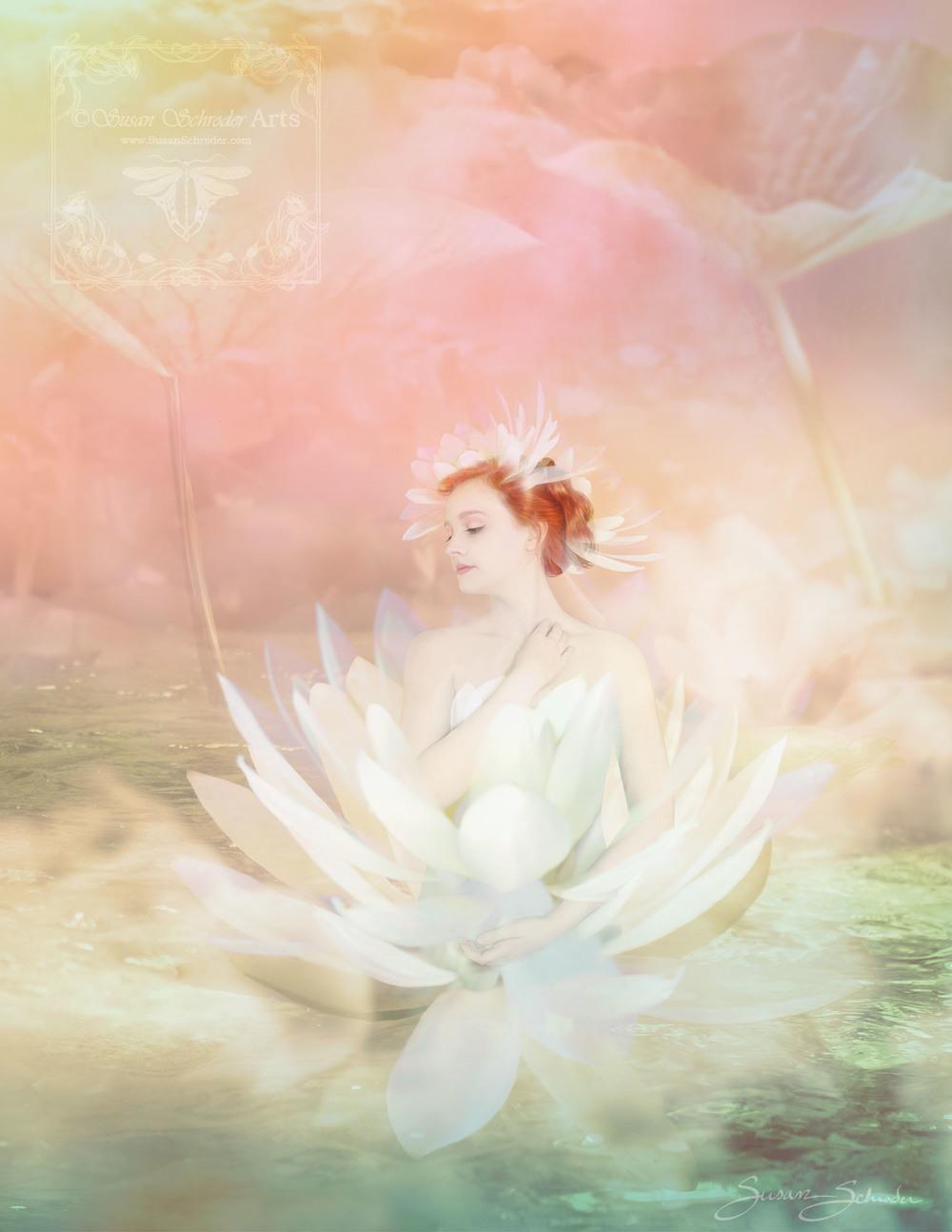 SusanSchroder_Lily Pond_web_Half.jpg