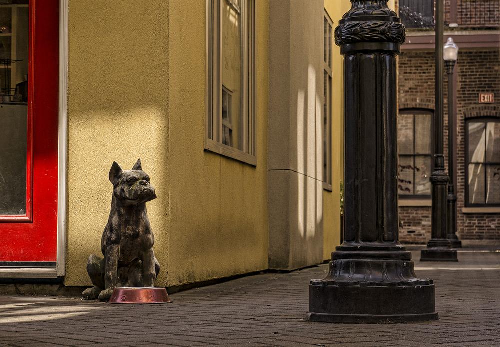 Alley Guardian