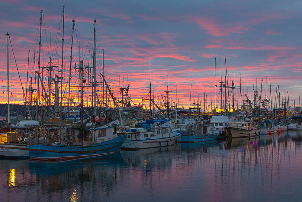 campbell river sunrise.jpg