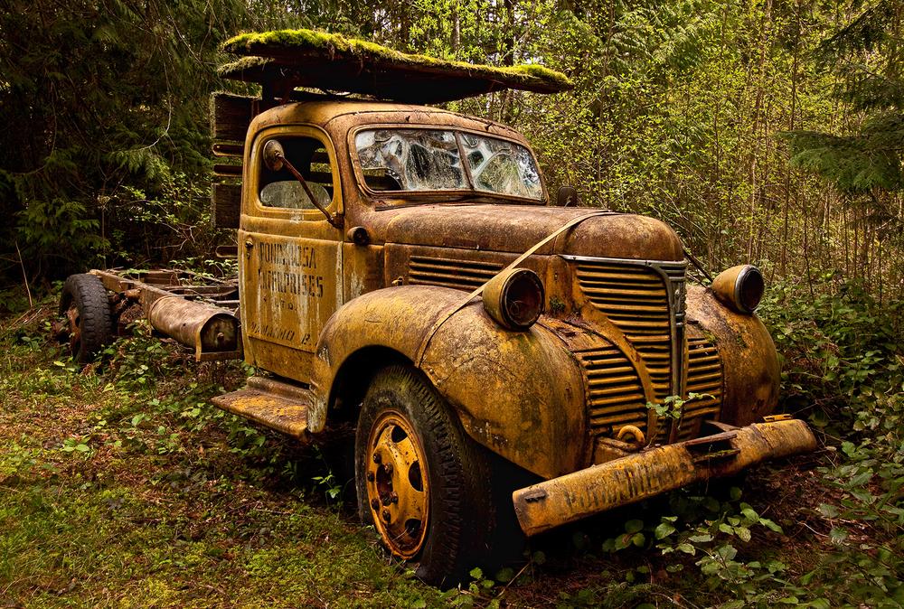 car graveyard-3.jpg