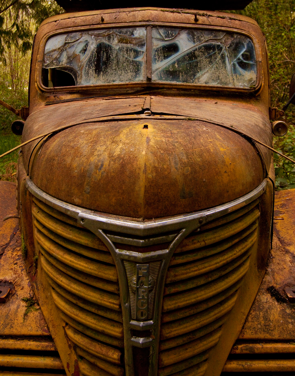 car graveyard-7.jpg