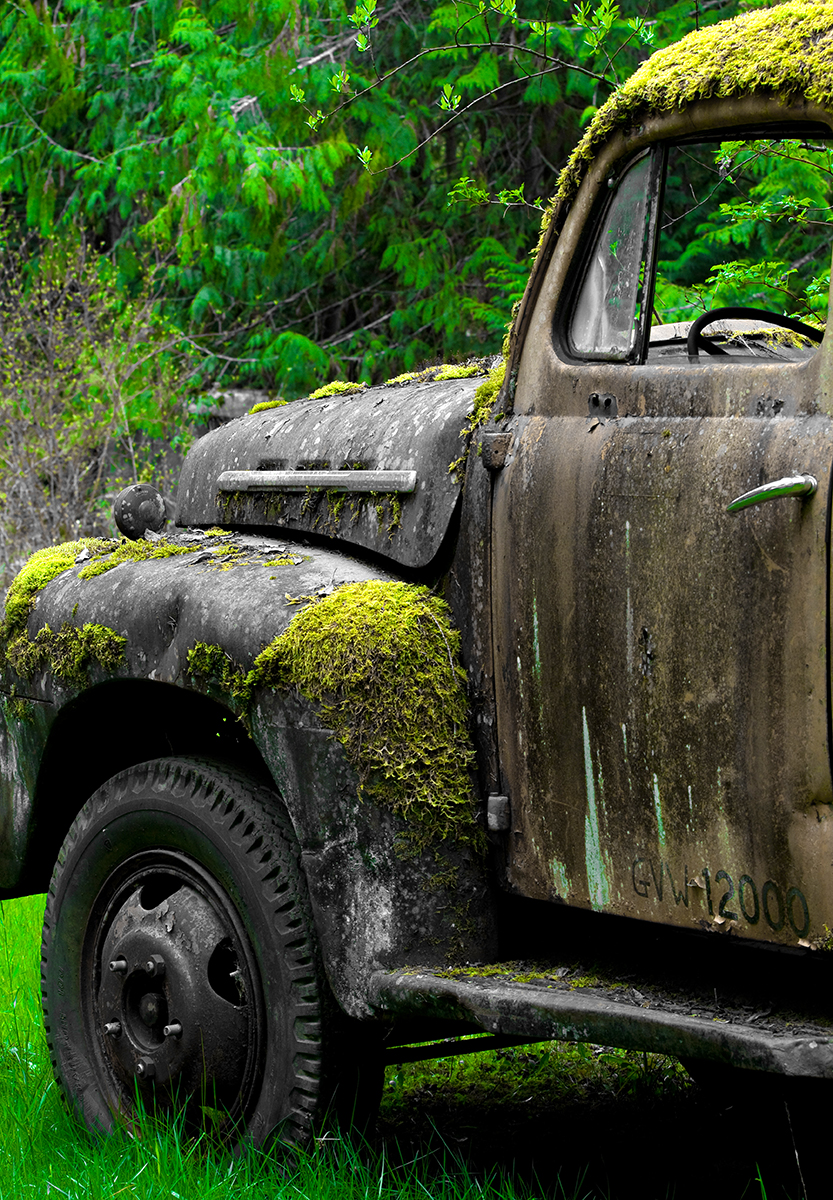car graveyard-50.jpg