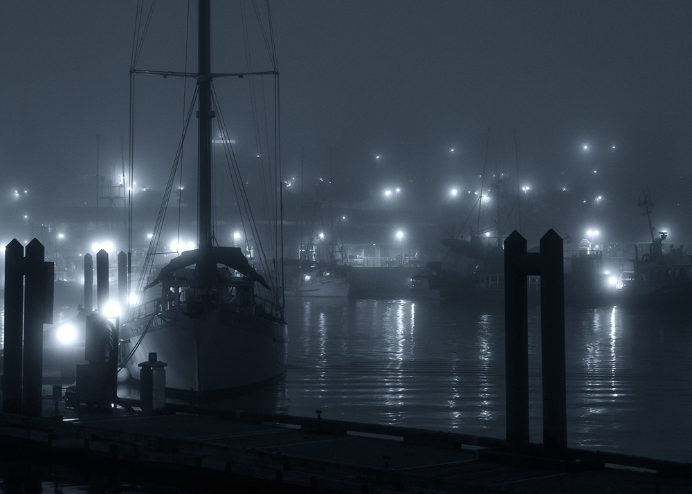 Foggy Nanaimo Waterfront-210010.jpg