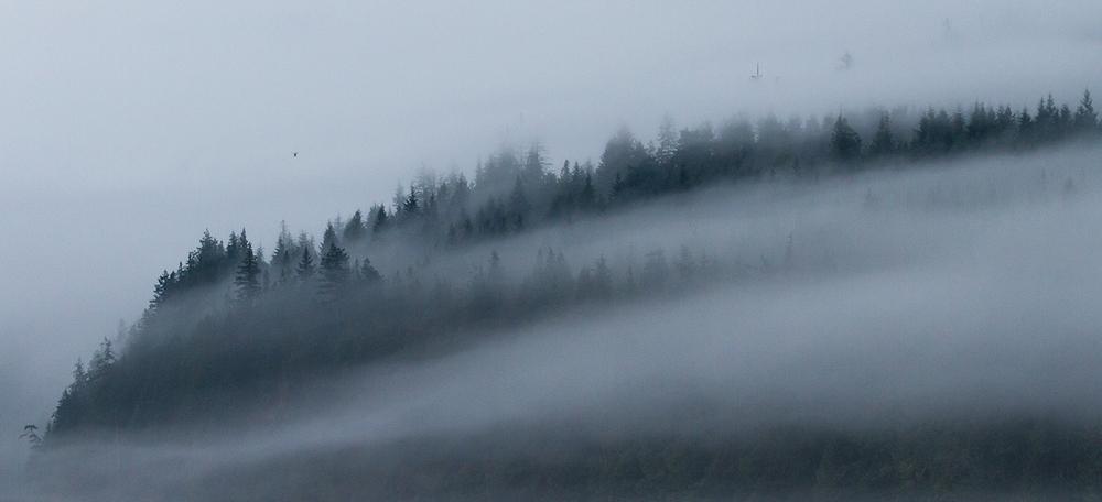 Bute Inlet Mist-0414.jpg