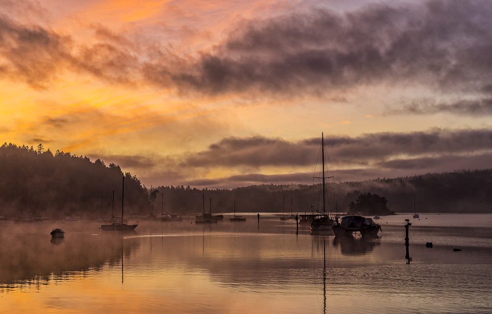 A misty golden winter sunrise at Degnen Bay on Gabriola island
