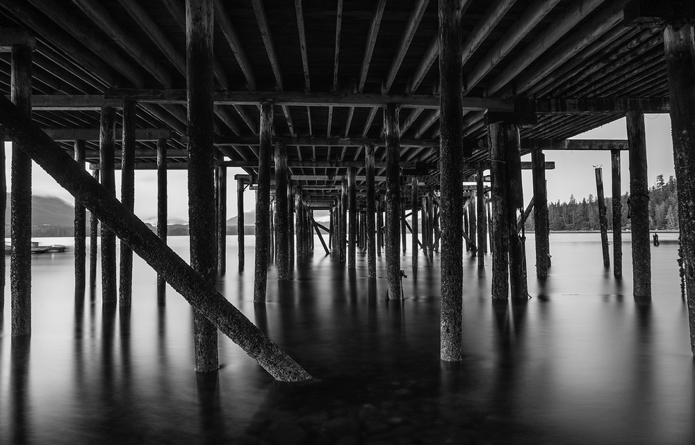 Alert Bay Pilings bw.jpg
