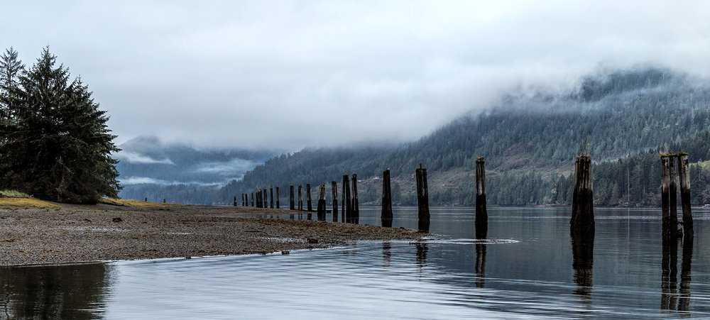 Old Pilings at Tahsis