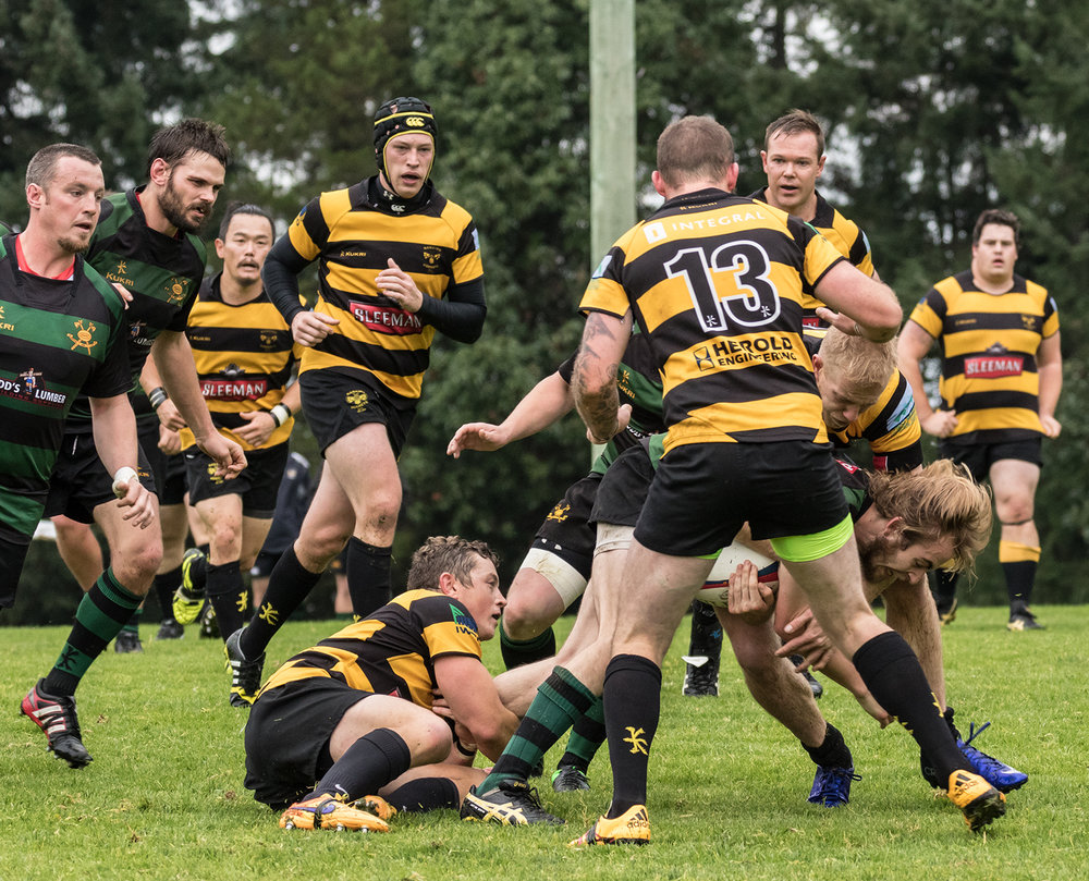 Hornets Rugby 6.jpg