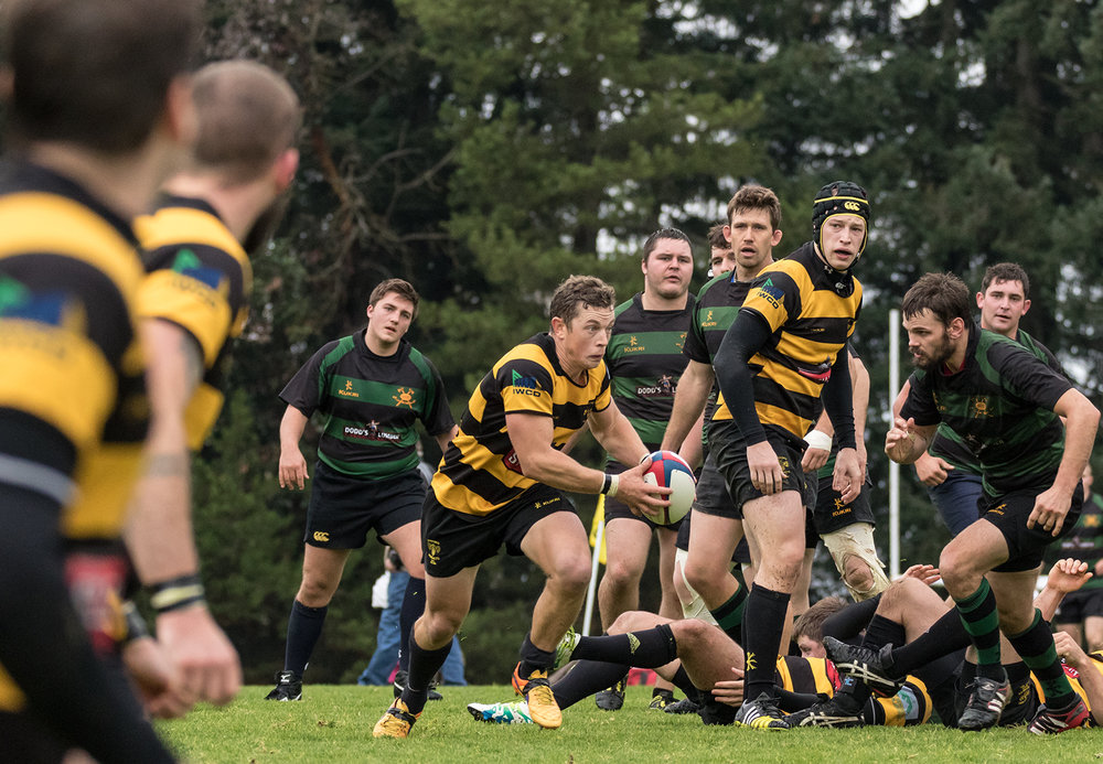 Hornets Rugby 7.jpg
