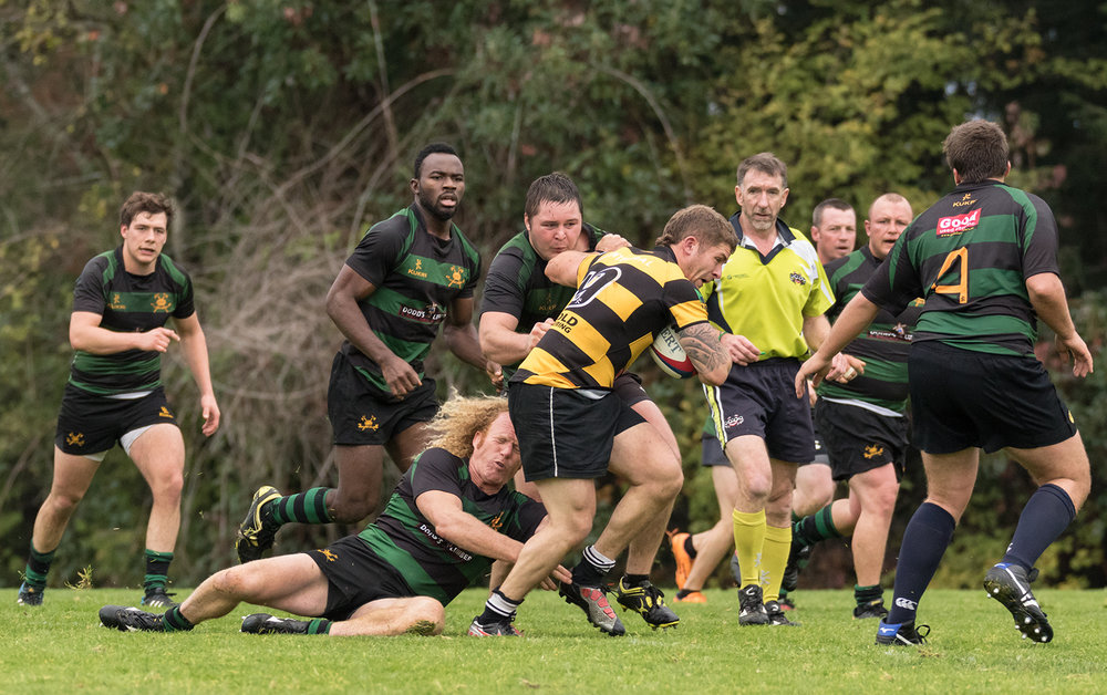 Hornets Rugby 8.jpg