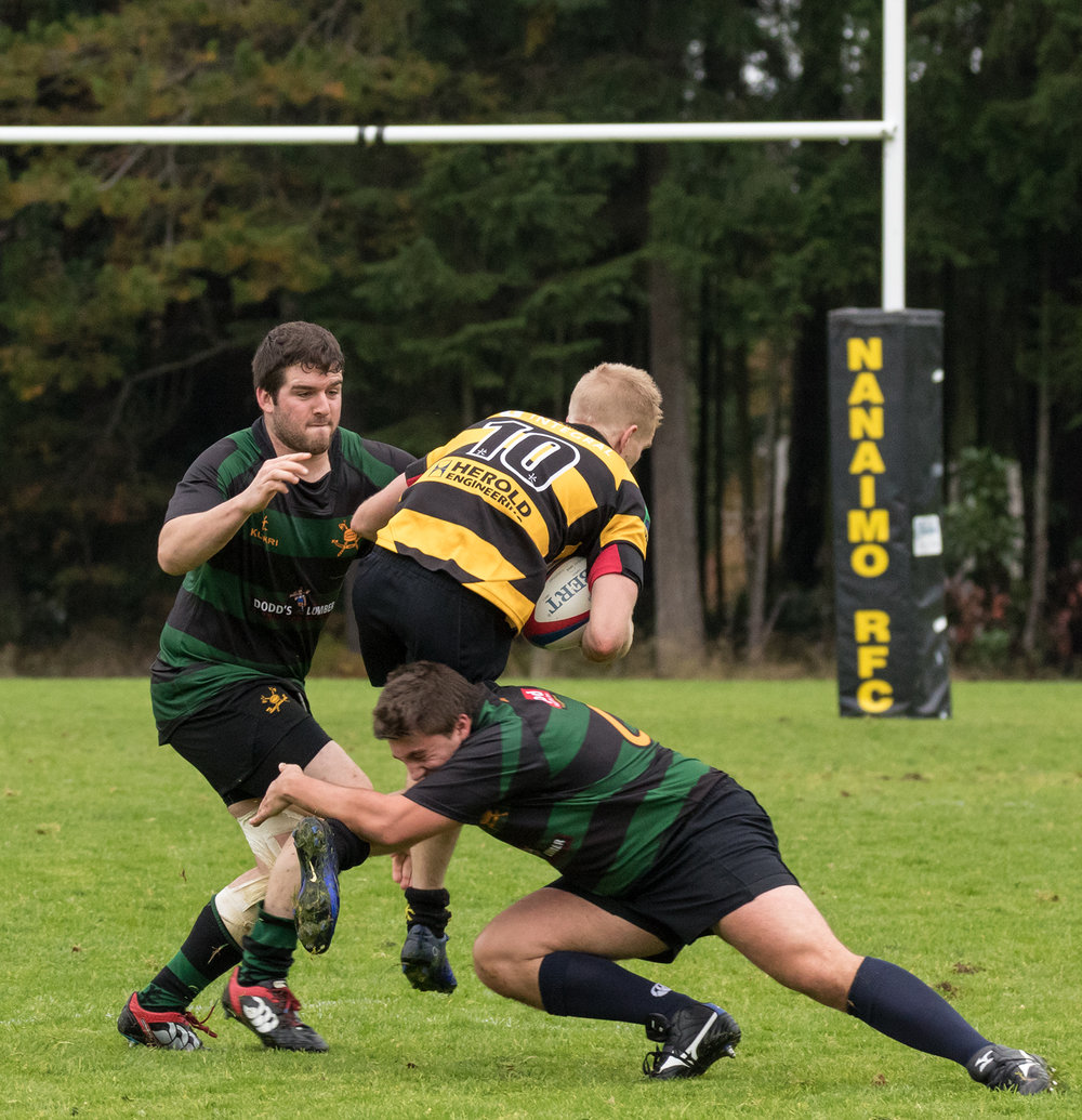 Hornets Rugby 10.jpg