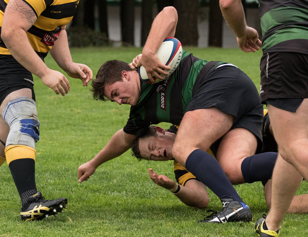 Hornets Rugby 13.jpg
