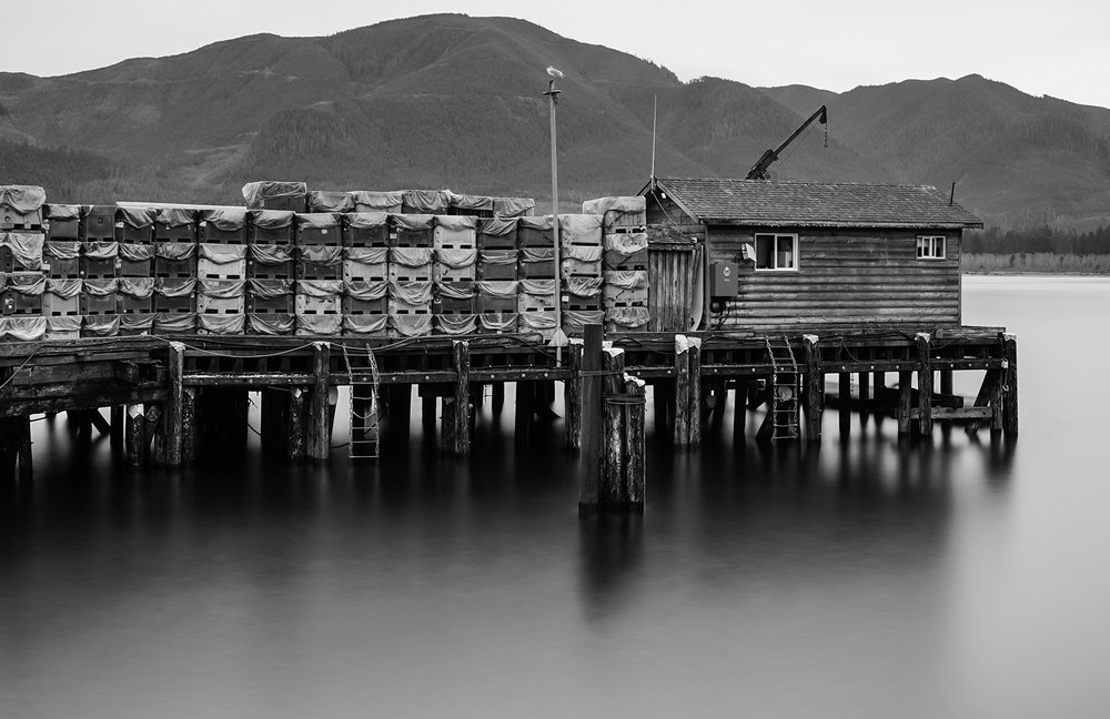 Port Renfrew Long Exposure