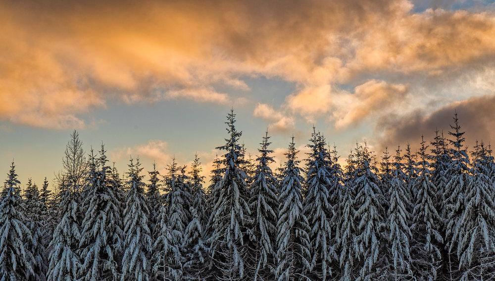 Logging Slash Sunset