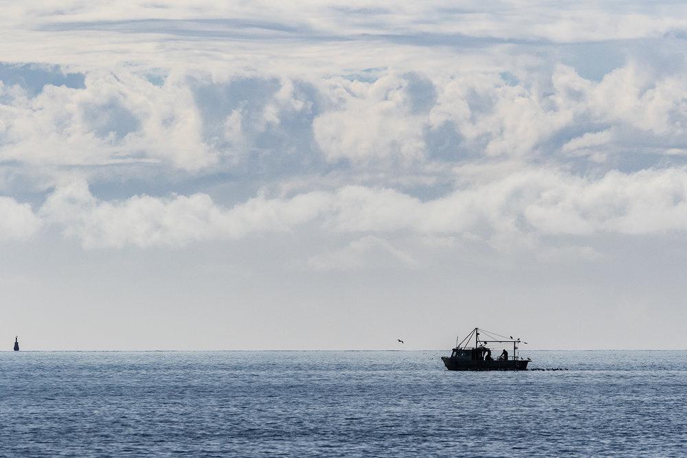 Fishing The Gulf.jpg