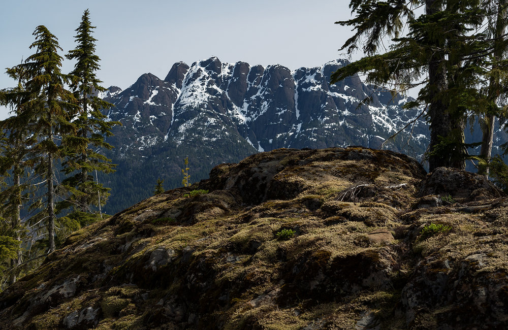 A little different view of Mt. Arrowsmith as seen from the West