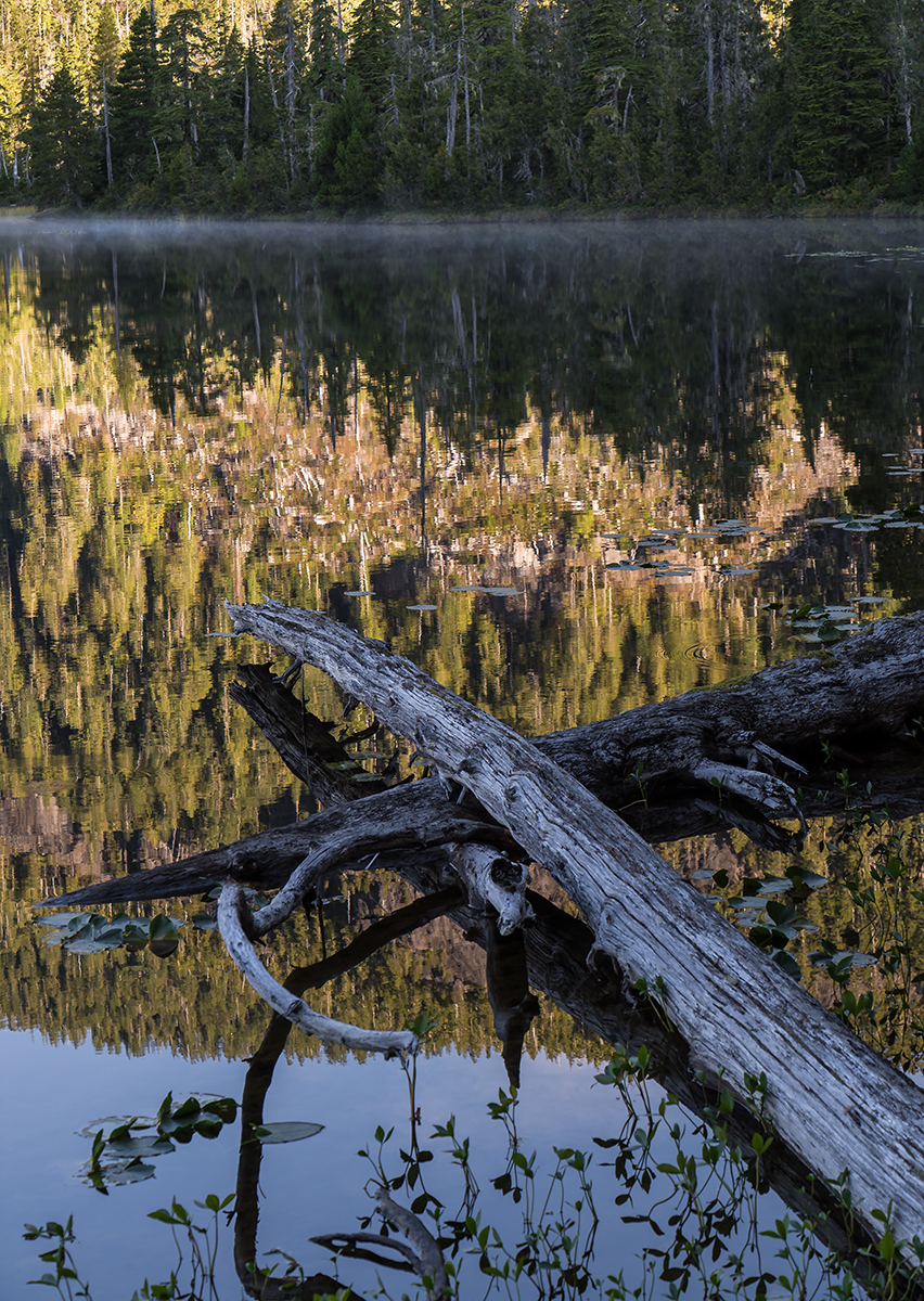 Bull Lake Reflections.jpg