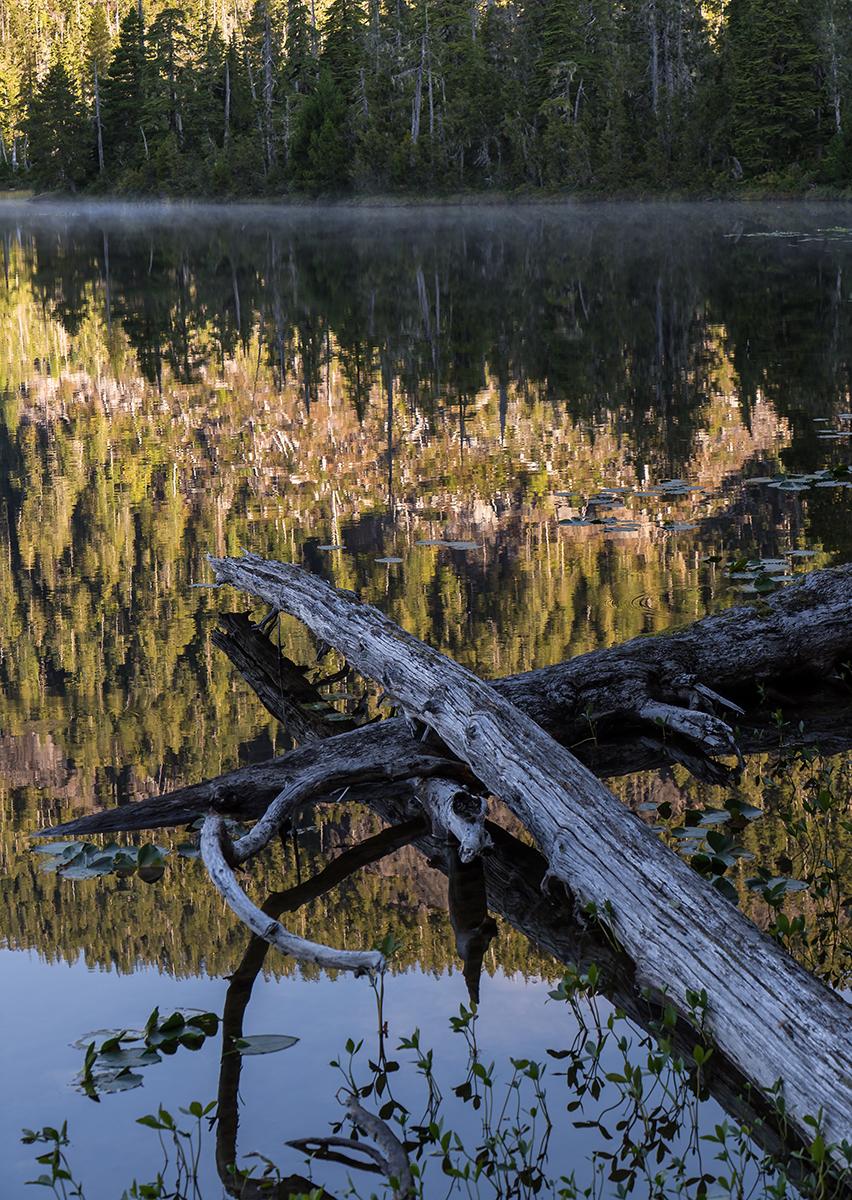 Bull Lake Reflections.jpg