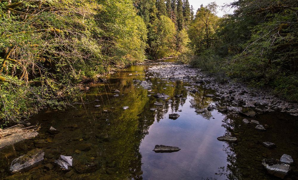Tahsis Creek.jpg