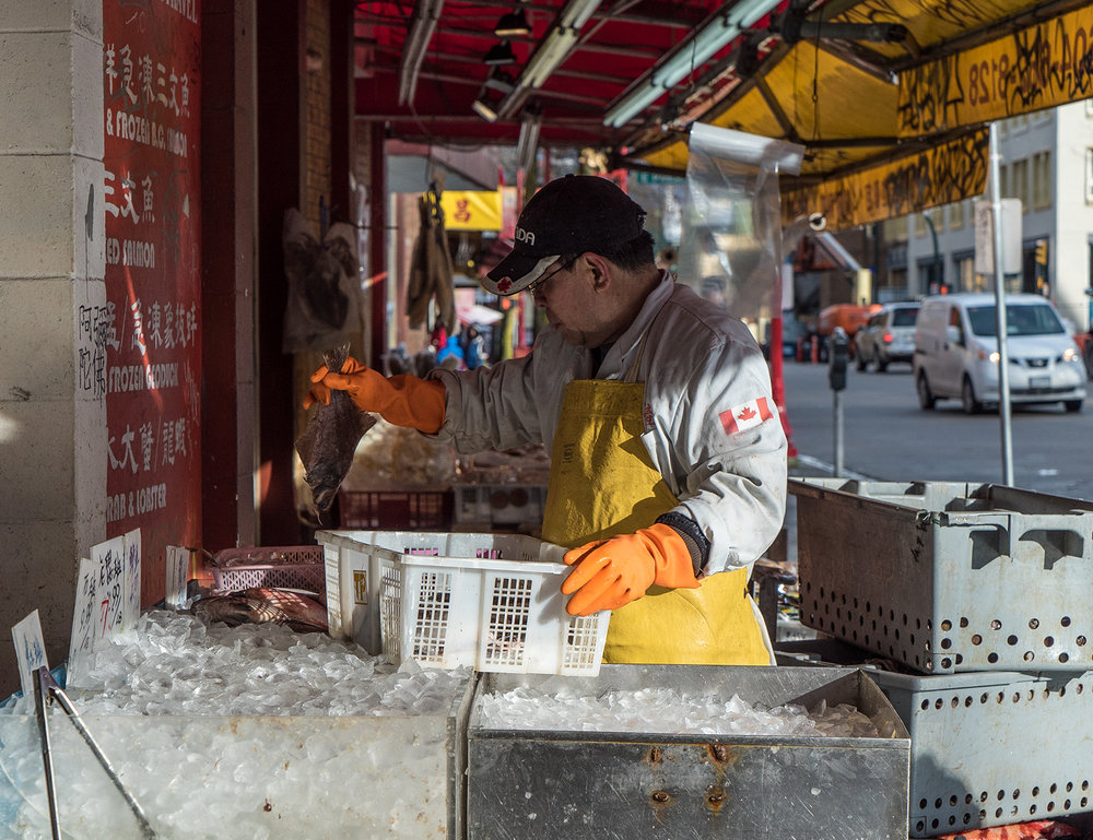 Chinatown Fish Market.jpg