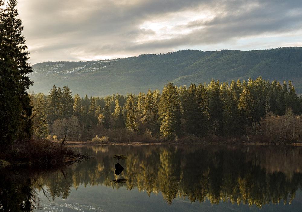 Fairy Lake at 1st light