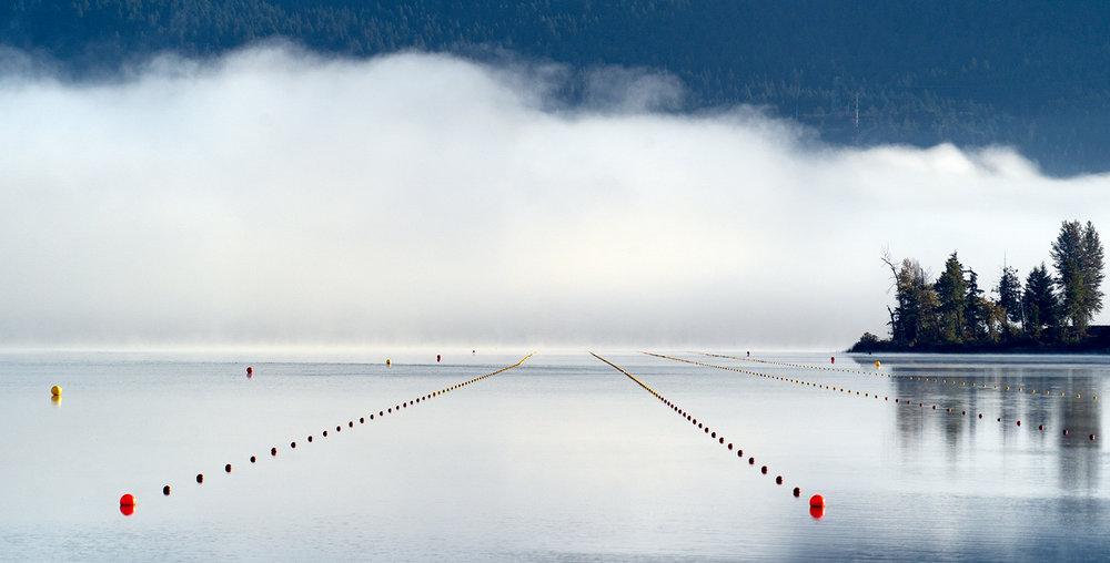 Quamichan Mist 002.jpg