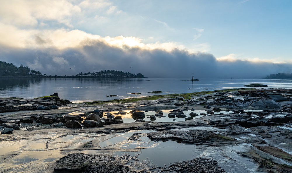 """Winter Fog Bank"" at Drumbeg Bay Park on Gabriola Island"