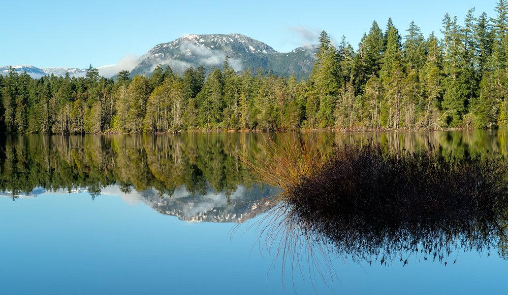 Spider Lake Serenity