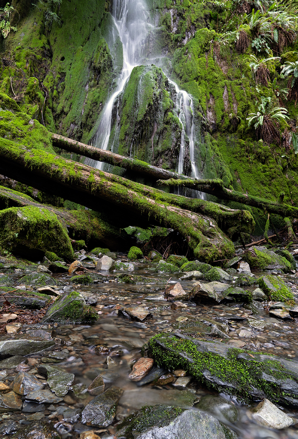 Goldstream Waterfall-Edit.jpg