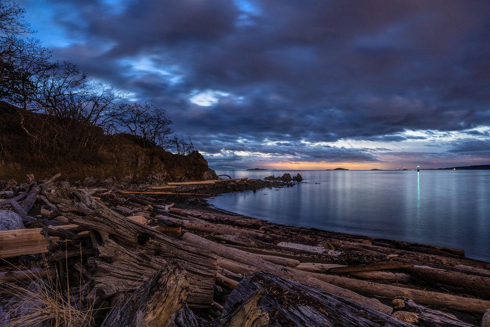 Winter Driftwood.jpg