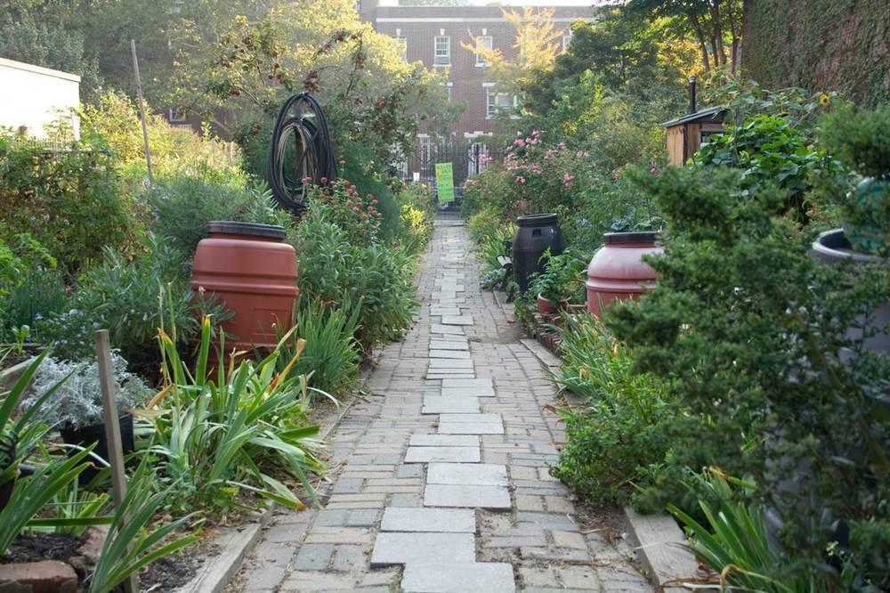 The Hollenback Community Garden, Brooklyn, New York