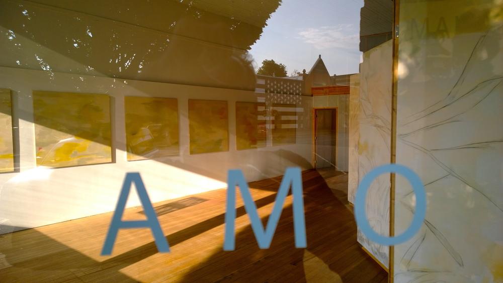 AMO low.jpg