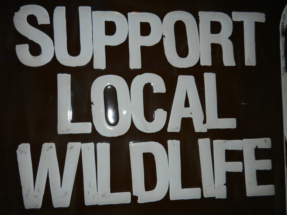 Star Bar is good at this motto: Support Local Wildlife