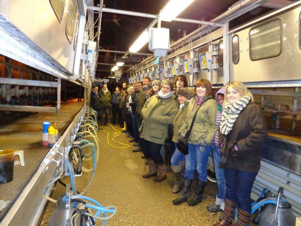 dairy farm.jpg