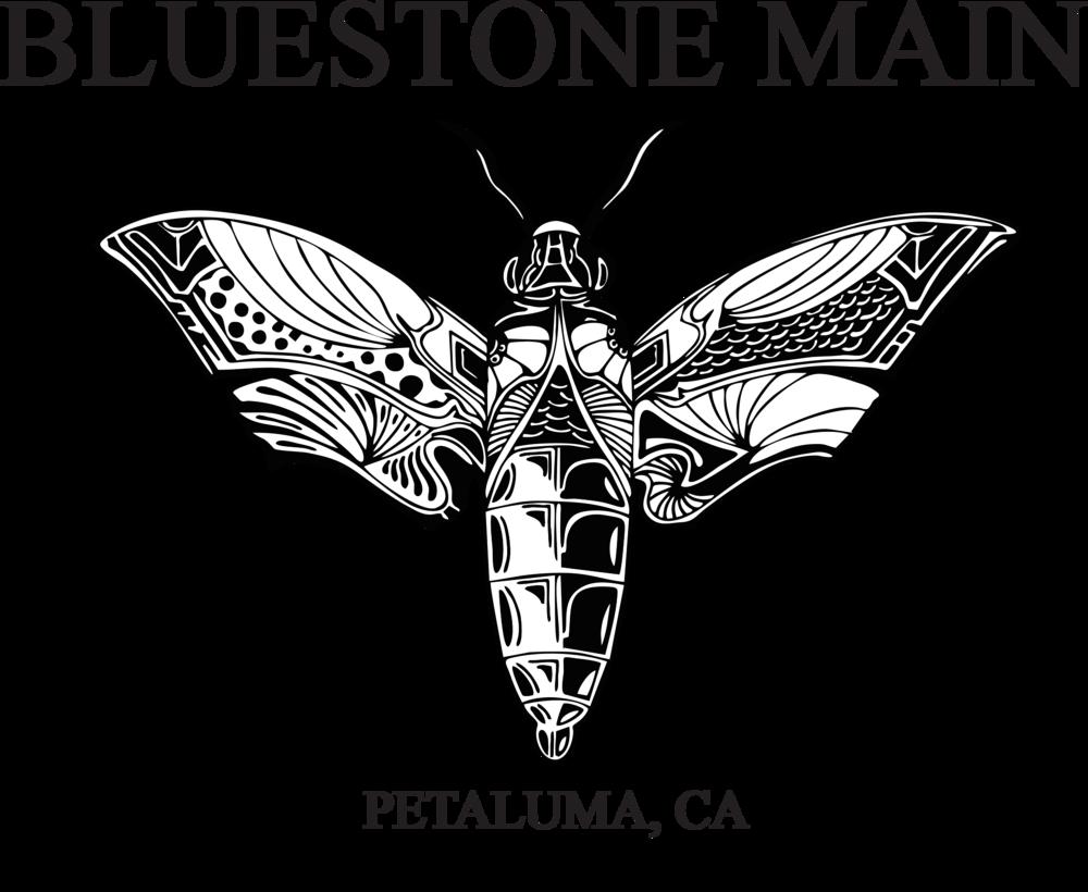 BLUESTONE MAIN logo trs.png