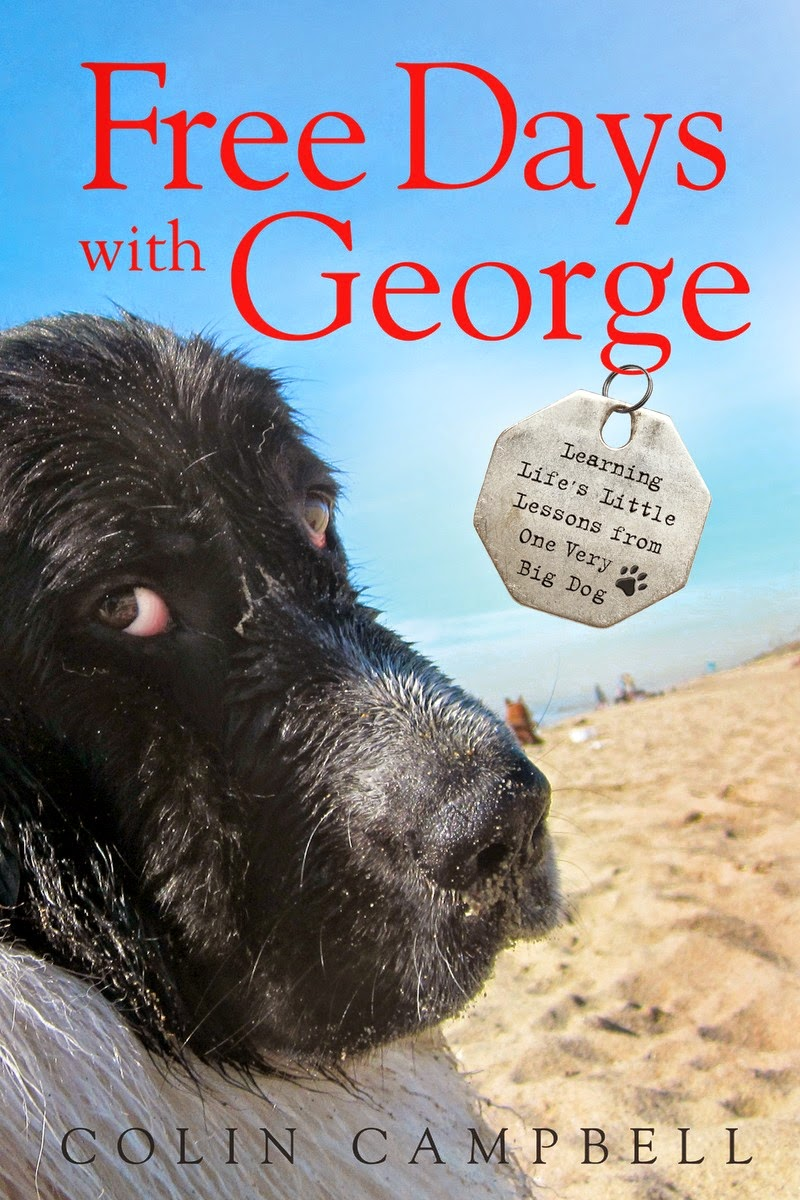 Free Days with George cover