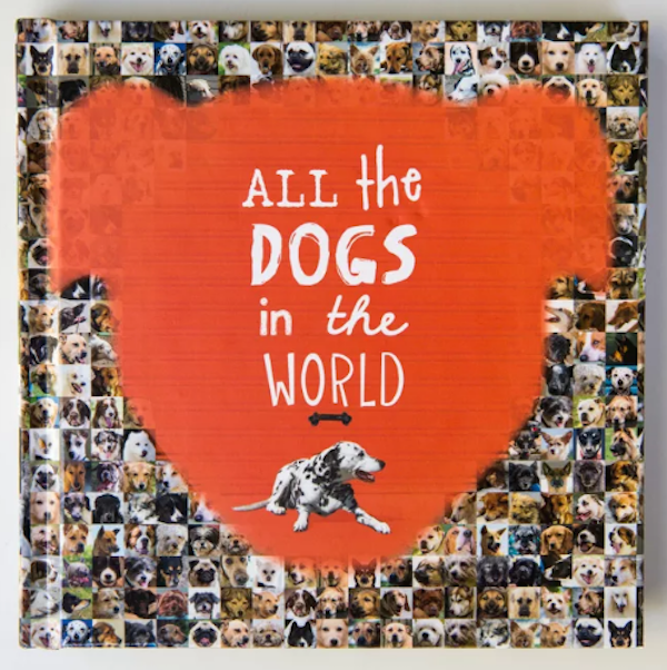 Jesse Hunter all the dogs in the world Cover.png