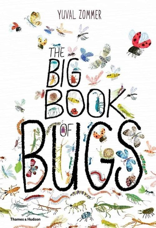 yuval zomer the big book of bugs large anthropologie.jpg