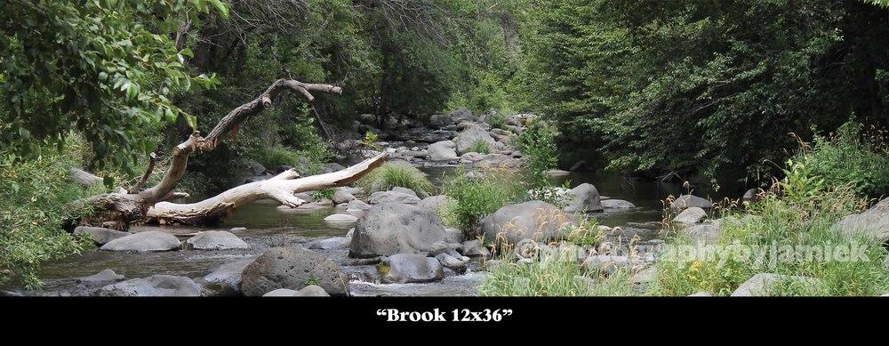 brook 12x36.jpg