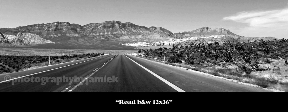 B&WRoad 12x36 copy.jpg